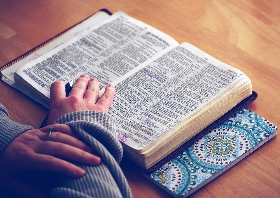 摄理教会献荣耀_全体圣经日_示意图