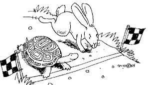 摄理新闻_龟兔赛跑_乌龟比兔子快到终点