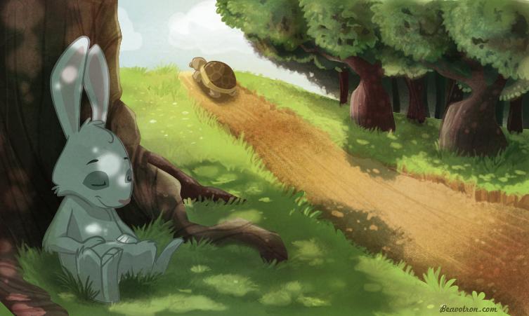摄理新闻_龟兔赛跑_兔子在树荫下乘凉