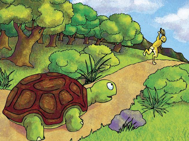 摄理新闻_龟兔赛跑的经典故事