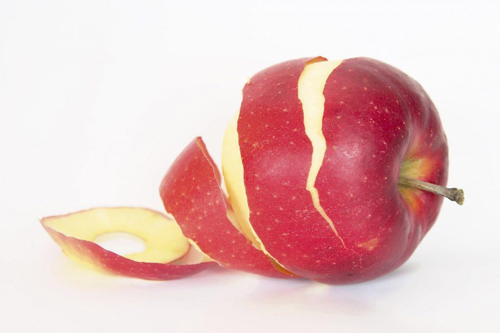 摄理新闻_郑明析牧师喂房间蚱猛的吃苹果皮_示意图