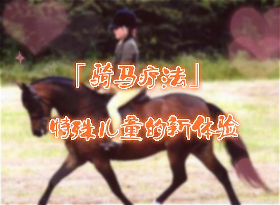 「骑马疗法」 —— 特殊儿童的新体验!