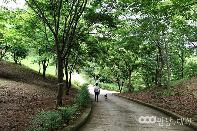 悠然漫步月明洞自然圣殿感受攝理幸福